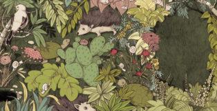 קיפודים, פרחים ושבלולים