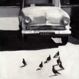 ציפורים ברחוב