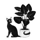 Cat Hugs Plant