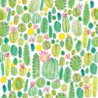 Cacti #2