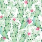 Cacti #4